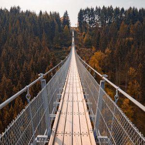 Die 300m lange Hängeseilbrücke Geierlay in mitten herbstlicher Bäume.